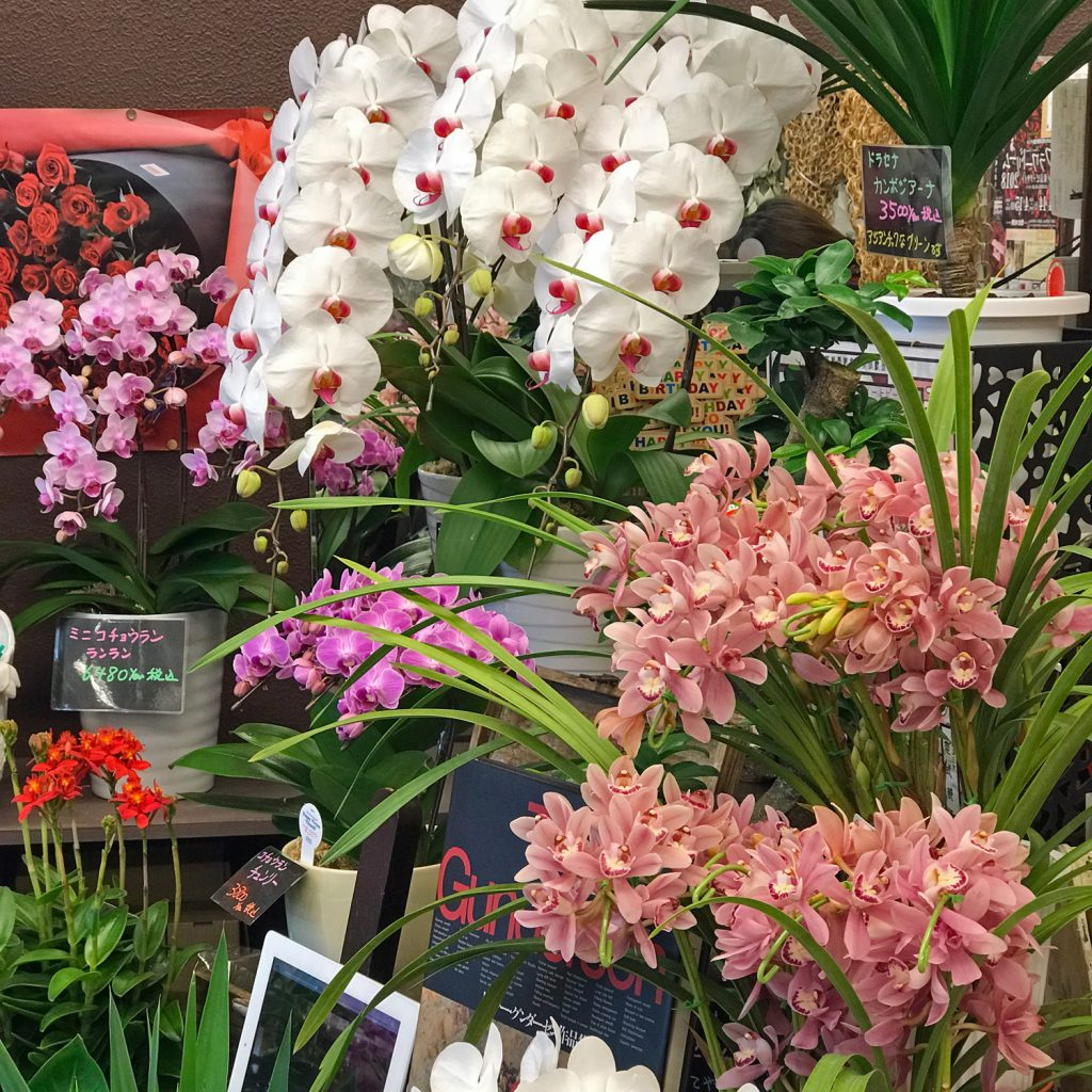 東京都大田区山王 大森の花屋 大花園(だいかえん)季節の旬な花をあなただけの贈り物に!上質でモダンな花贈りを大森スタイルでお届けします。ホワイトデー