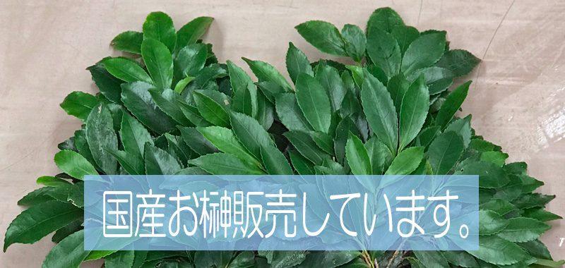 東京都大田区山王 大森の花屋 大花園(だいかえん)季節の旬な花をあなただけの贈り物に!上質でモダンな花贈りを大森スタイルでお届けします。お榊